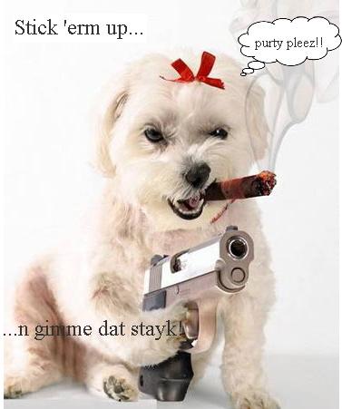 dogwgun-purtyplz.jpg